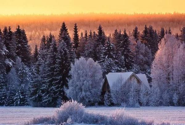 Urime Krishtëlindjet dhe Vitin e ri 2016 A2oeTEBbzB8e_K_A6Bk07-LzbR7qfcBsTBGZCe8RvHcKKg3484xvtg==
