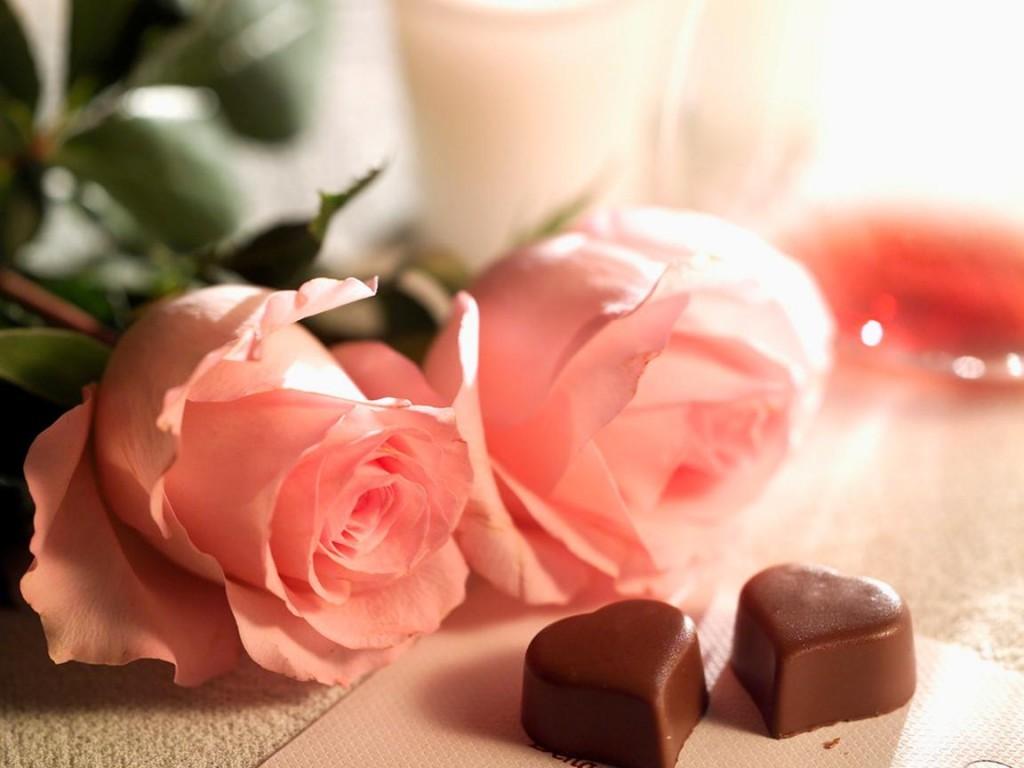 Lule dhe vetëm lule! - Faqe 2 DONhJe_B1oPb9XpjUOI65ilMXcQ9saDPWwqbojCCqcTWFFCYTNpfpg==